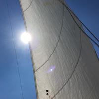 Segeln: Spi-Segeln auf dem Steinhuder Meer